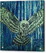 Black Owl On Blue Night Acrylic Print