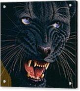 Black Panther 2 Acrylic Print by Jurek Zamoyski
