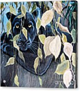 Black Panther 2 Acrylic Print
