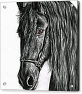 Black Pearl Acrylic Print