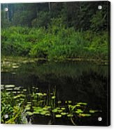 Black Pond Acrylic Print