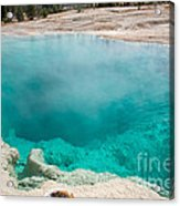 Black Pool In West Thumb Geyser Basin In Yellowstone National Park Acrylic Print