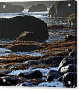 Black Rocks Lichen And Sea  Acrylic Print