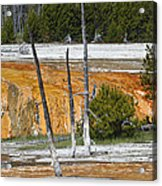 Black Sand Basin Therma Runoff Yellowstone Acrylic Print