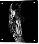 Black Satin Acrylic Print