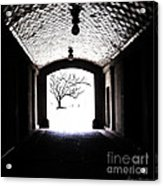 Black Tree Acrylic Print