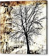 Black White And Sepia Tones Silhouette Tree Painting Acrylic Print