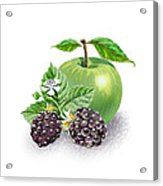 Blackberries And Green Apple Acrylic Print