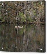 Blackwater Reflections Acrylic Print
