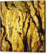 Blanchard Springs Caverns-arkansas Series 04 Acrylic Print