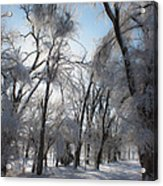 Blanket Of Snow Acrylic Print by Jeff Swanson