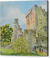 Blarney_castle_1 Acrylic Print