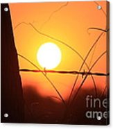 Blazing Orange Fence Line Sunset Acrylic Print