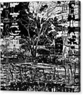 Bleak Renewal Acrylic Print