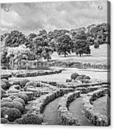 Bleak Topiary  Acrylic Print