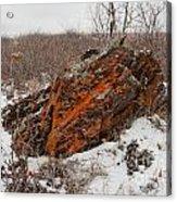 Bleak Winter Arctic Steppe Orange Lichens Rock Acrylic Print