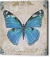 Bleu Papillon-b Acrylic Print