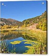 Beauty In Colorado Acrylic Print