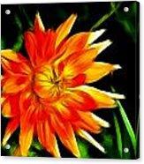 Bloom Tine Acrylic Print