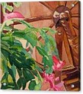 Bloomin' Cactus Acrylic Print