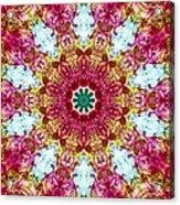 Blooming Awareness Acrylic Print