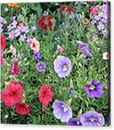 Blooming Extravaganza Acrylic Print