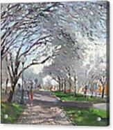 Blooming In Niagara Park Acrylic Print