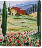 Blooming Poppy In Tuscany Acrylic Print
