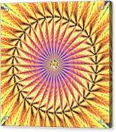 Blooming Seasons Kaleidoscope Acrylic Print by Derek Gedney