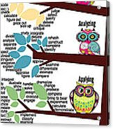 Bloom's Taxonomy With Verbs Acrylic Print