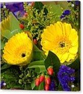 Blossom Yellow Gerbera Acrylic Print