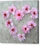 Blossoming Love Acrylic Print