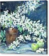 Blossoms And Apples Acrylic Print