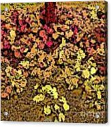 Blossoms And Tree In Yellow And Red Acrylic Print