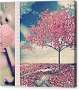 Blossoms Of Spring Acrylic Print