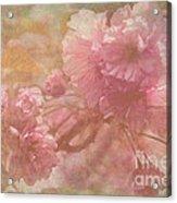 Blossoms Splender Acrylic Print