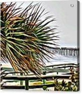 Blowin At The Beach Acrylic Print
