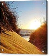 Blowing Sand Dune 12 11/03 Acrylic Print