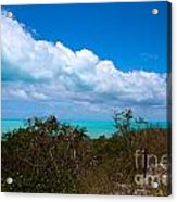 Blue 2 Of 5 Acrylic Print