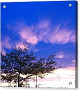 Blue And Purple Skies At Sunset Acrylic Print