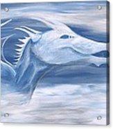 Blue And White Dragon Acrylic Print