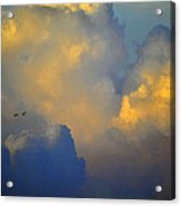 Blue And Yellow Clouds At Sunset With Birds Usa Acrylic Print
