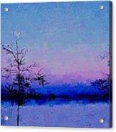 Blue Ballet Acrylic Print