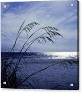 Blue Beach Acrylic Print