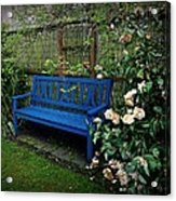 Blue Bench With Roses Acrylic Print