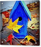 Blue Bird House Acrylic Print
