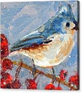Blue Bird In Winter - Tuft Titmouse Modern Impressionist Art Acrylic Print