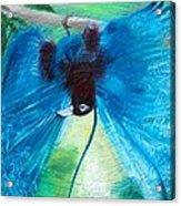 Blue Bird Of Paradise Acrylic Print