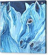 Blue Boyz Acrylic Print