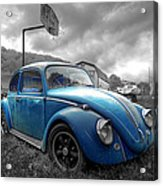 Blue Bug Acrylic Print